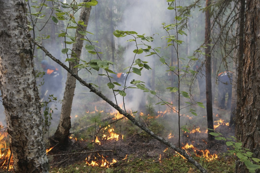 In this photo provided by Ministry of Emergency Situations of Krasnoyarsk Region on Saturday, Aug. 3, 2019, a fire in a forest in Krasnoyarsk Region, ...