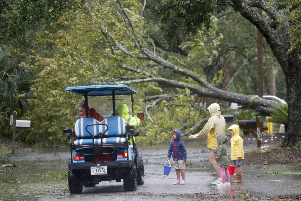 Isle of Palms residents look at a downed tree on Hartnett Blvd. during Hurricane Dorian at the Isle of Palms, S.C., Thursday, Sept. 5, 2019, in Charle...