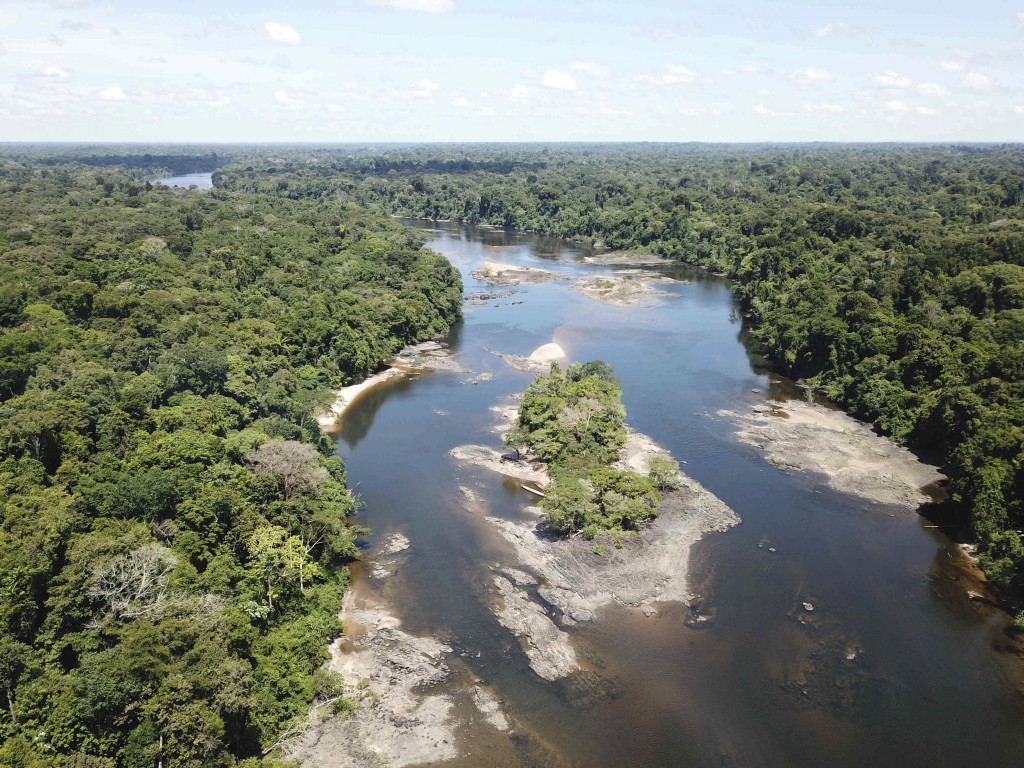 This undated photo provided by researchers in September 2019 shows typical electric eel highland habitat in Suriname's Coppename River. Two newly disc...
