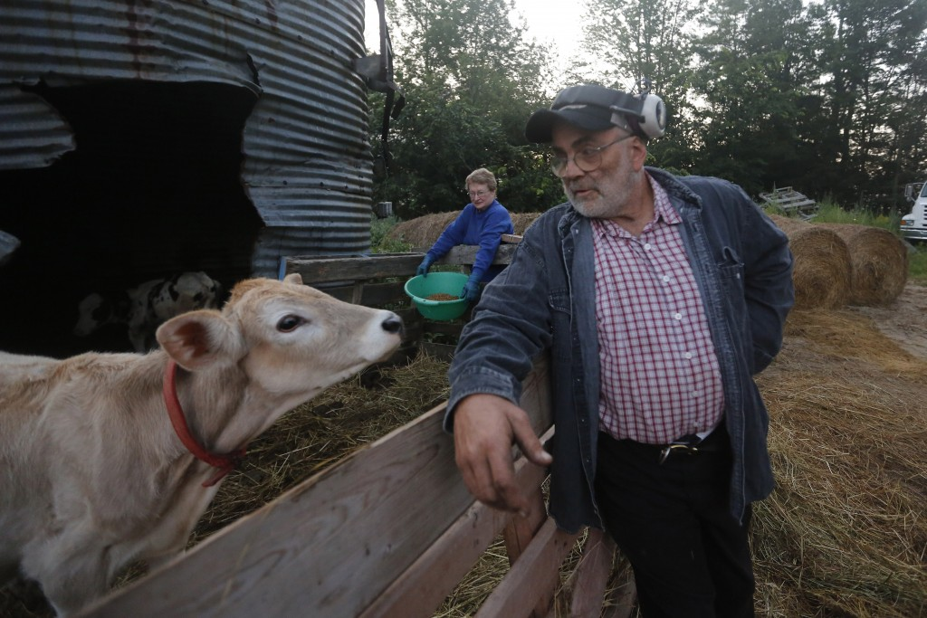 In this Thursday Aug. 15, 2019 photo, dairy farmer Fred and Laura Stone work on their dairy farm in Arundel, Maine. The couple's dairy farm has been f...