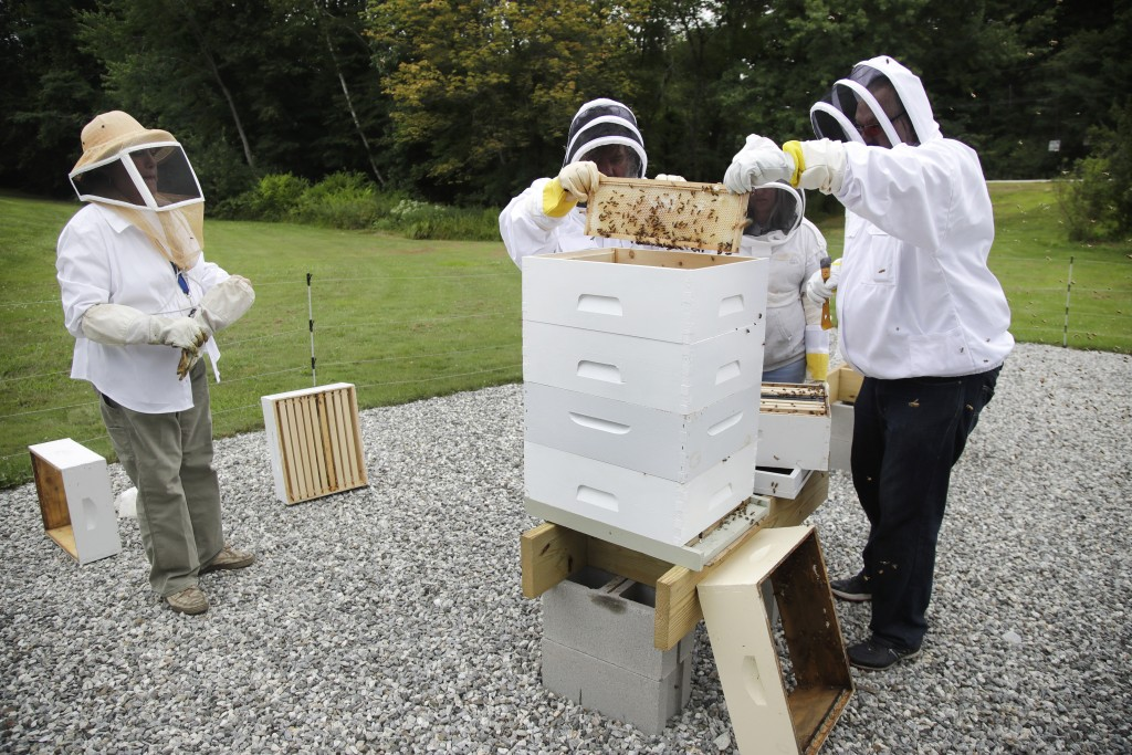 In this Aug. 7, 2019 photo, instructor Karen Eaton, left, supervises beekeeping activities performed by veterans at the Veterans Affairs' beehives in
