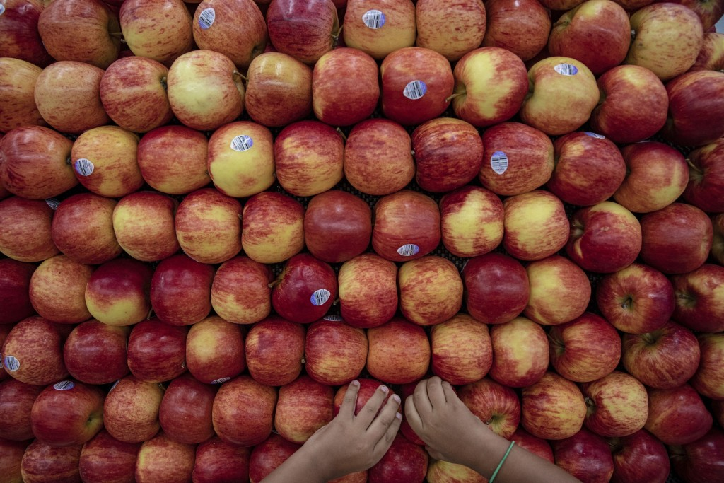 In this Thursday, Aug. 15, 2019, photo, Rian Gatewood-Hillestad plays with apples while shopping with his parents at Pete's Market in Chicago's Garfie...