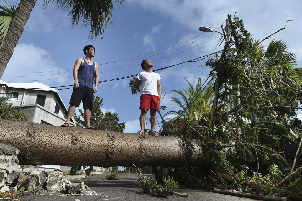Men stand on a tree felled by Hurricane Humberto, on Pitts Bay Road in Hamilton, Bermuda, Thursday, Sept. 19, 2019. Humberto blew off rooftops, topple...