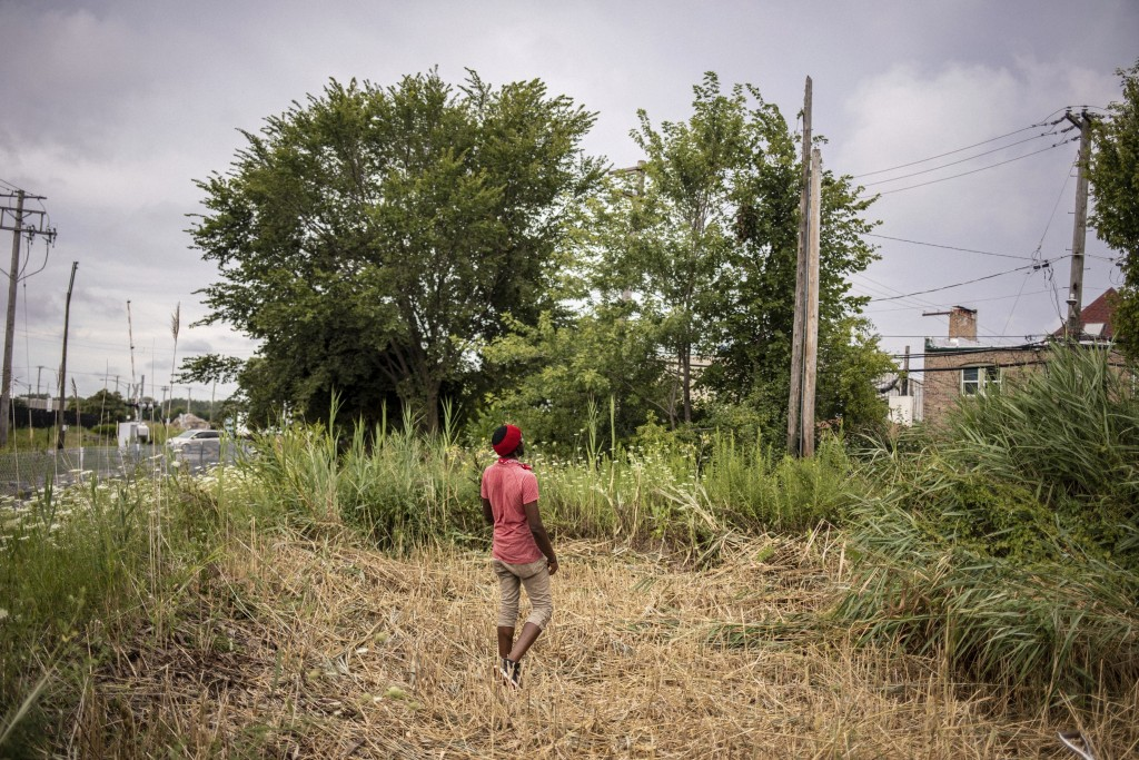 In this Saturday, Aug. 17, 2019, photo, Olisaemeka Okakpu walks into a section of public land consisting of high weeds and brush, that his organizatio...