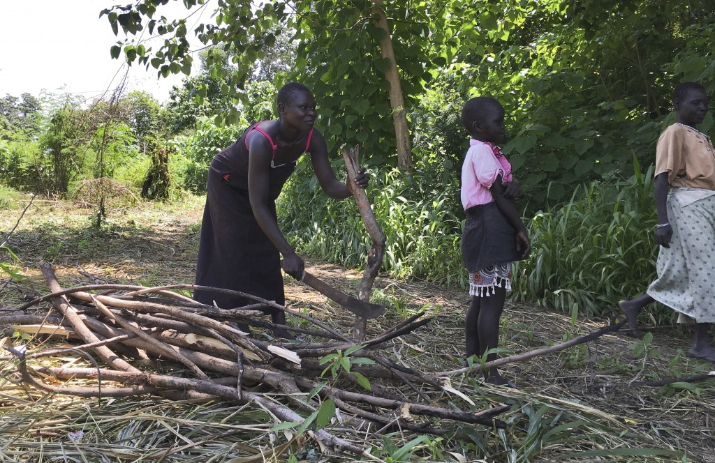 FILE - In this Friday, July 14, 2017 file photo, a woman chops down trees for firewood with her daughter in the small town of Rajaf, near Juba, in Sou...