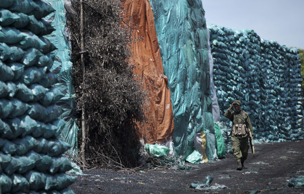 FILE - In this Wednesday, Dec. 14, 2011 file photo, a member of a pro-government Somali militia walks amongst piles of locally-produced charcoal, in t...