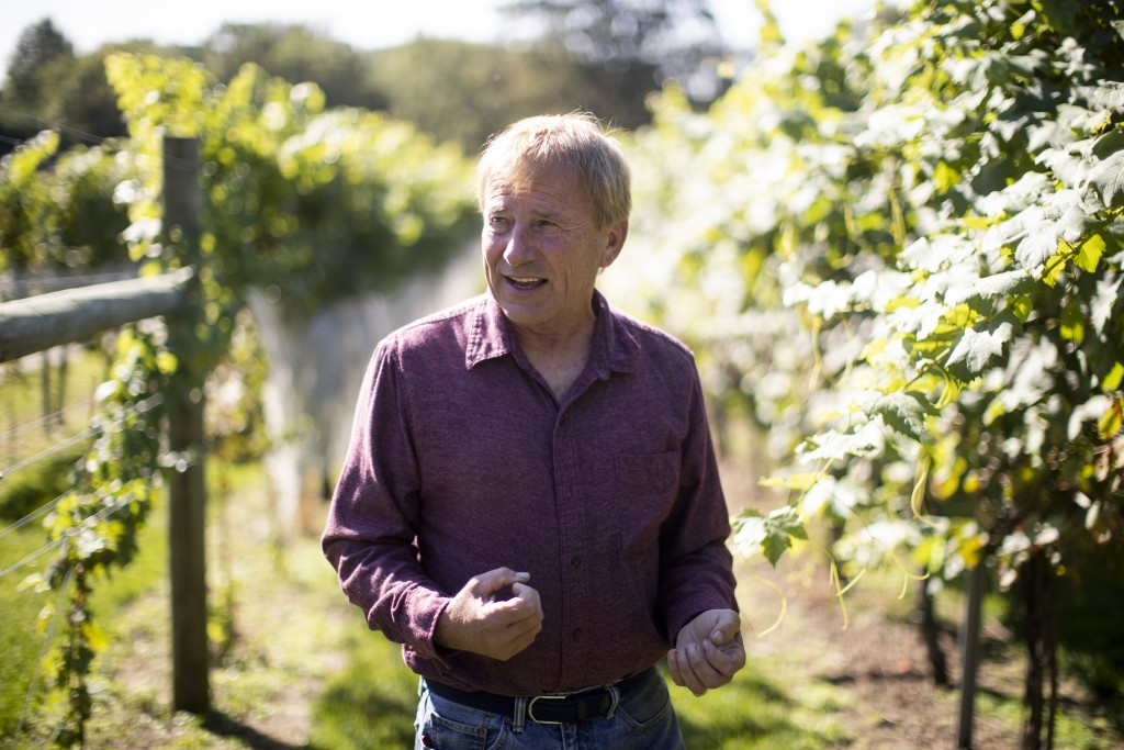 In this Thursday, Sept. 19, 2019, photo, Dean Scott speaks during an interview with The Associated Press at his vineyard in Kutztown, Pa. The spotted ...