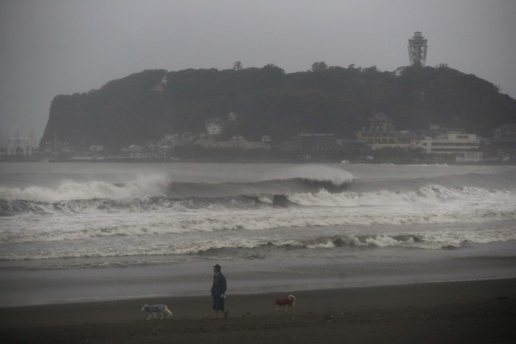 A man walk his dogs along the beach as waves batter the shore Saturday, Oct. 12, 2019, in Fujisawa, west of Tokyo. A powerful typhoon is forecast to b...
