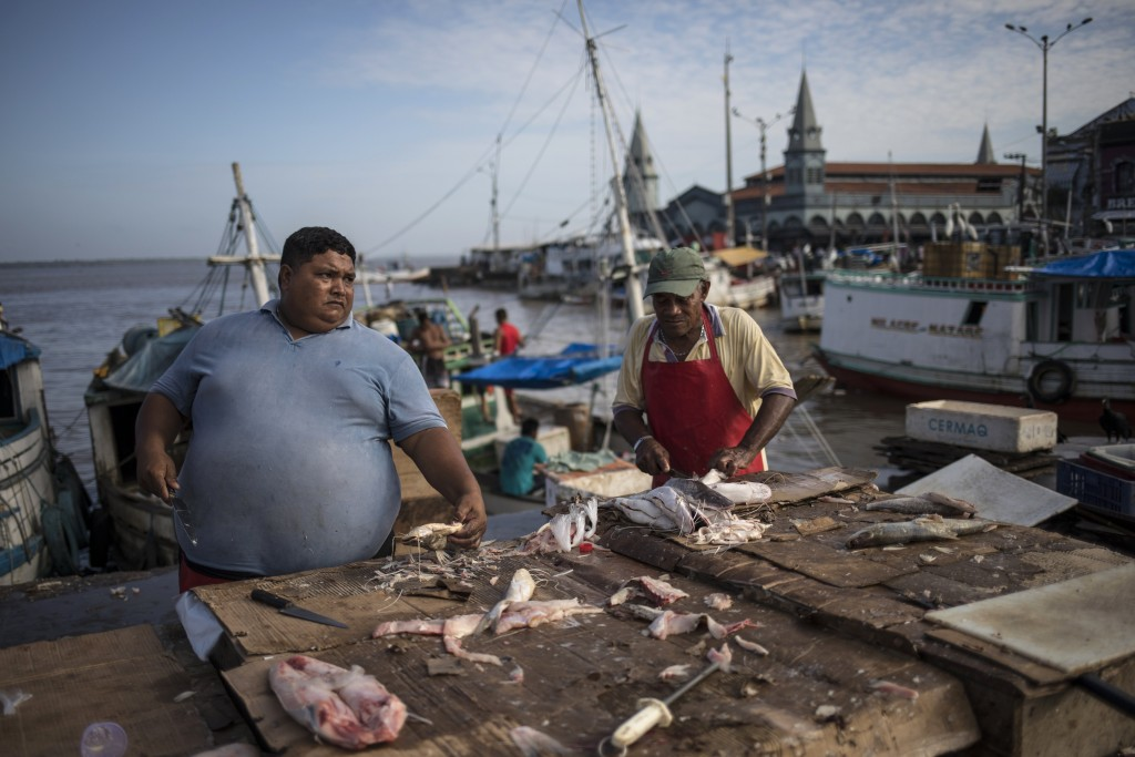 In this Sept. 7, 2019 photo, fish vendors work at their stands at the Ver-o-Peso riverside market in Belém, Brazil. Ver-O-Peso at the Guajara Bay rive...