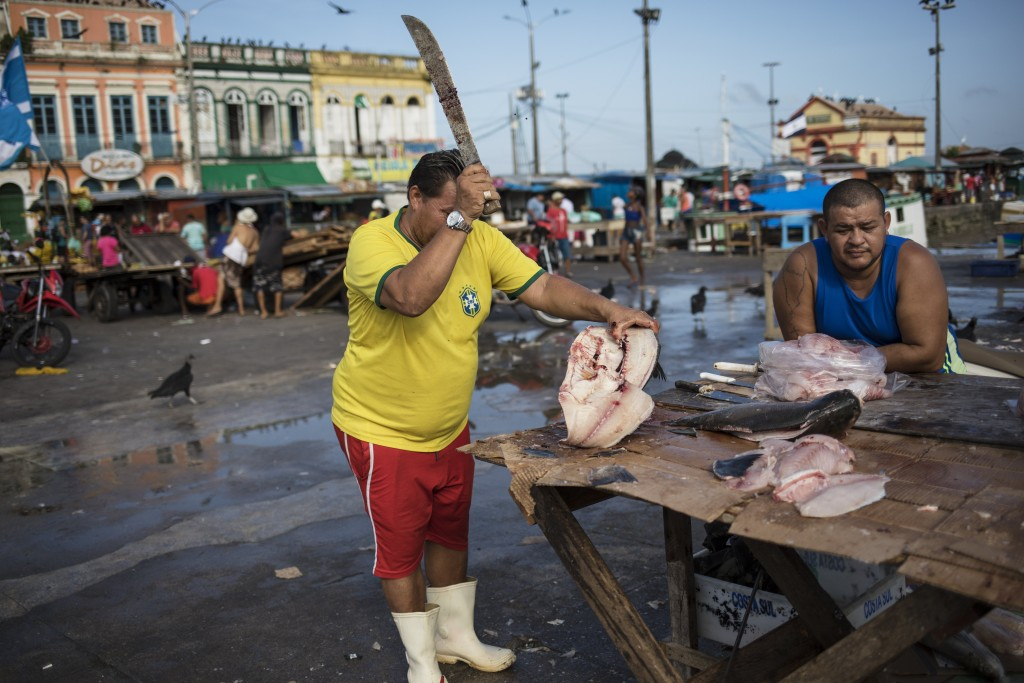 In this Sept. 7, 2019 photo, a vendor prepares fish for customers at his street stand at the Ver-o-Peso riverside market in Belém, Brazil. The Ver-o-P...