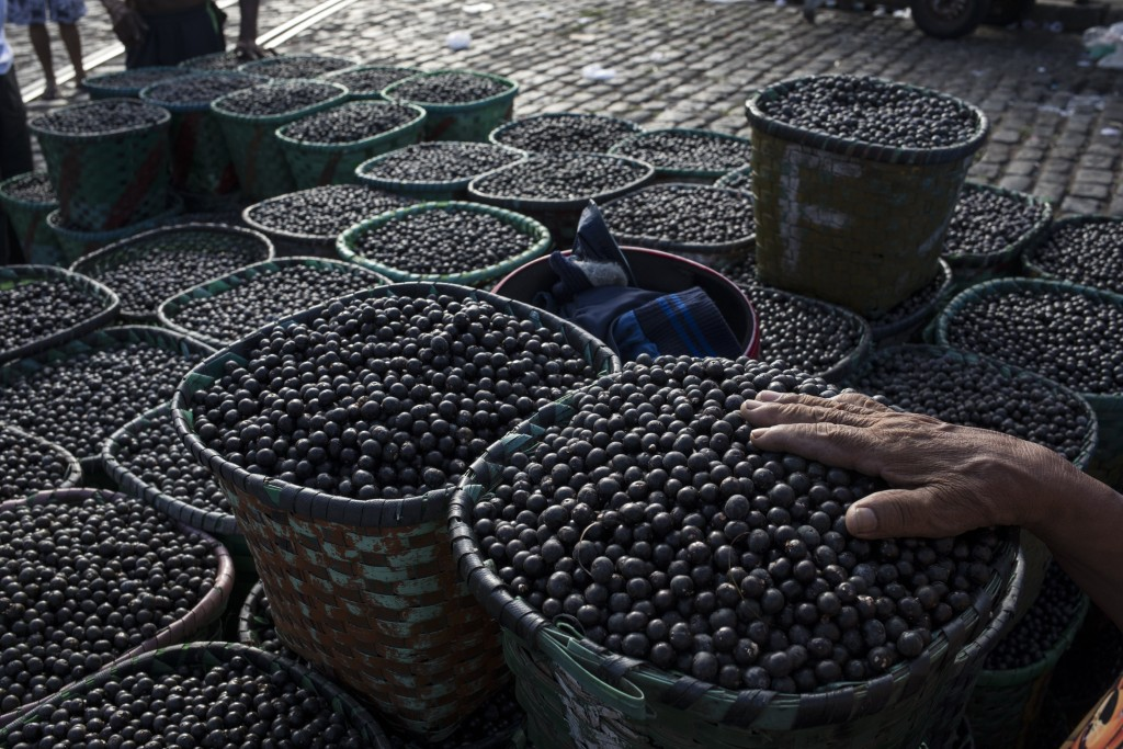 In this Sept. 7, 2019 photo, a vendor places his hand on acai berries at the Ver-o-Peso riverside market in Belém, Brazil. Belém is the epicenter for ...