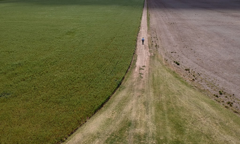 In this Oct. 9, 2019 photo, Jose Luis Grattone walks on a farm road, on the outskirts of Pergamino, Argentina. In recent days, Argentina's President M...