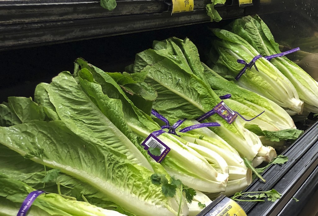 FILE - This Nov. 20, 2018 file photo shows Romaine Lettuce in Simi Valley, Calif.  U.S. health officials are telling people to avoid romaine lettuce g...