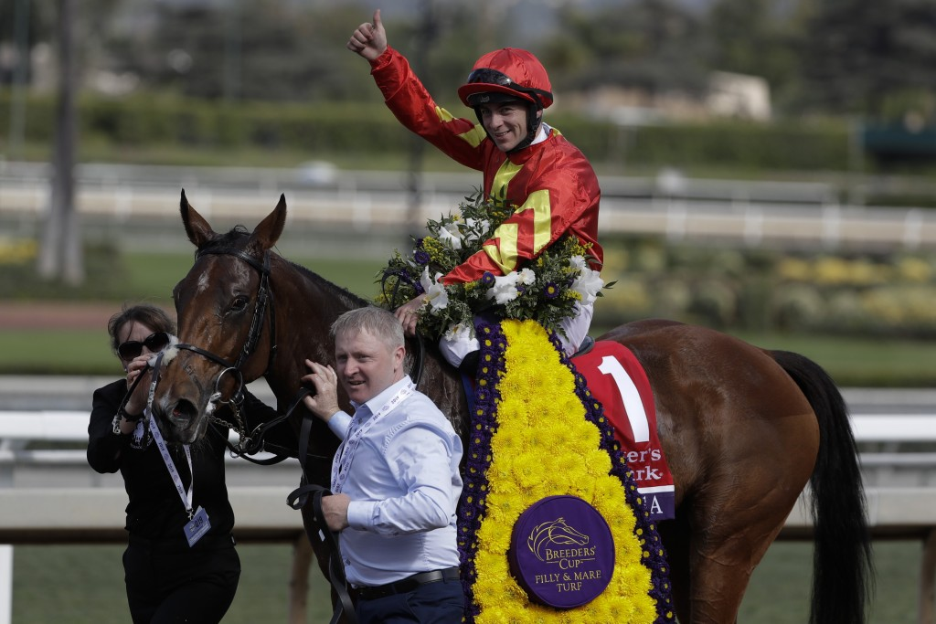 Wayne Lordan aboard Iridessa celebrates after winning the Breeders' Cup Filly and Mare Turf horse race at Santa Anita Park, Saturday, Nov. 2, 2019, in...
