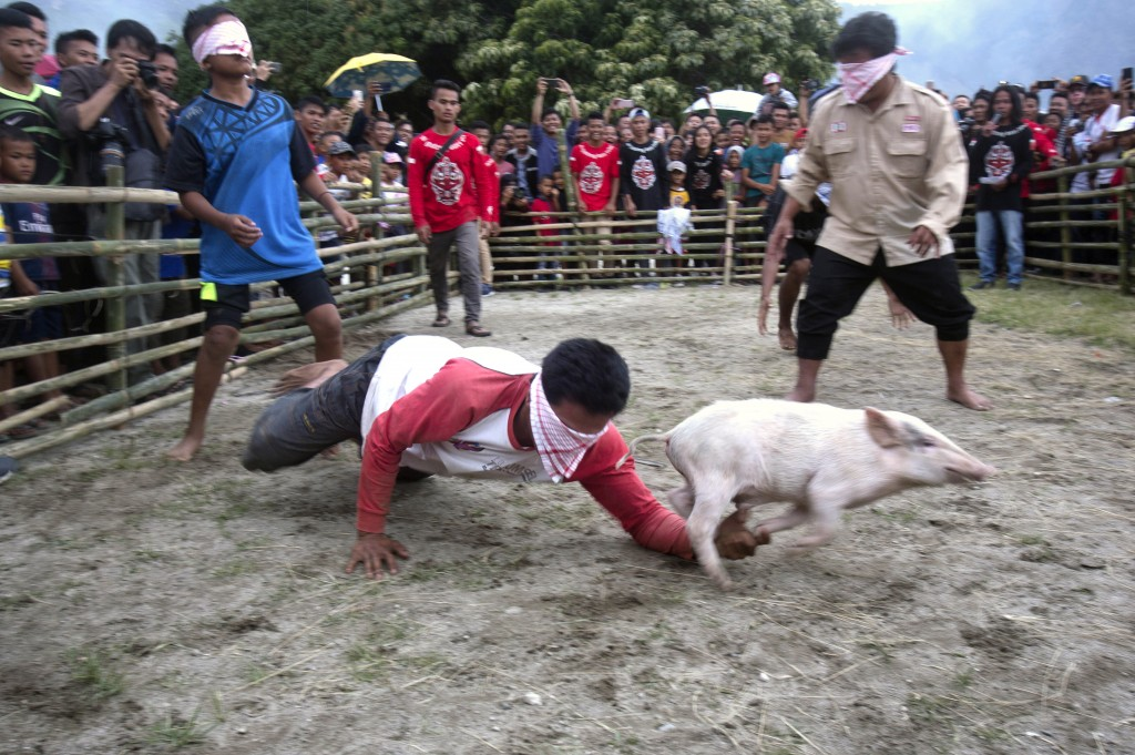 In this Saturday, Oct. 26, 2019 photo, blindfolded men participate in a pig catching competition during Toba Pig and Pork Festival, in Muara, North Su...