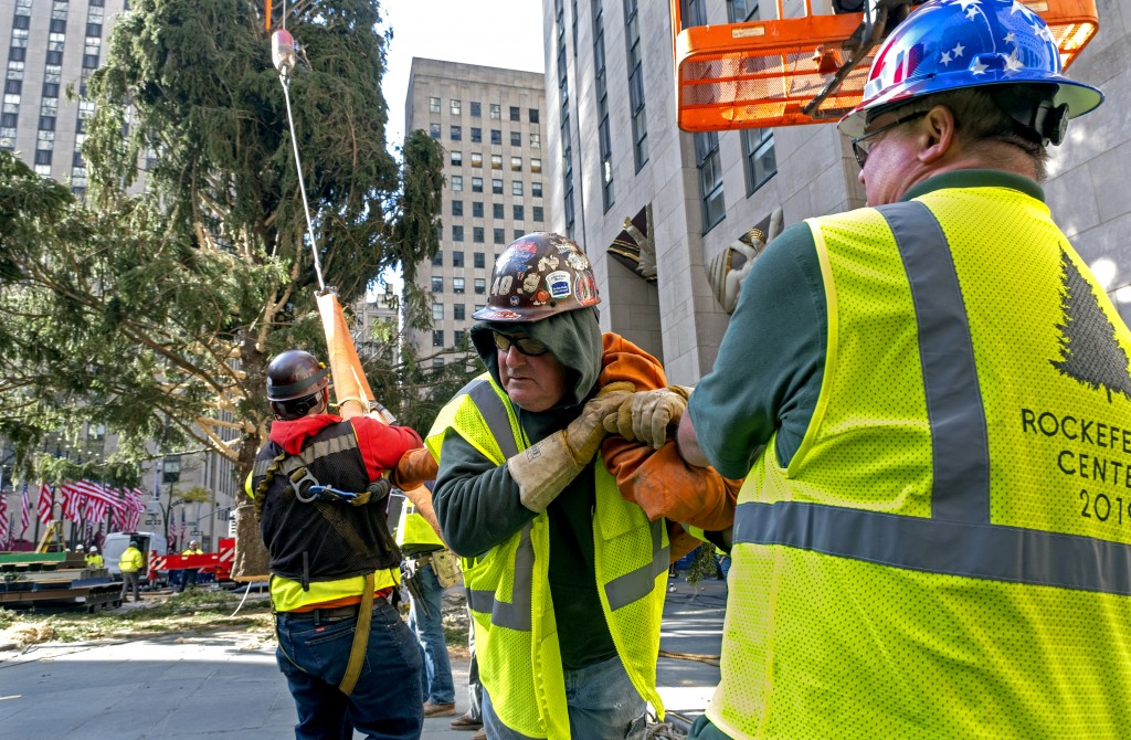 Workers work to free a cable as its released from the 2019 Rockefeller Center Christmas tree, a 77-foot tall, 12-ton Norway Spruce, as its prepared fo...