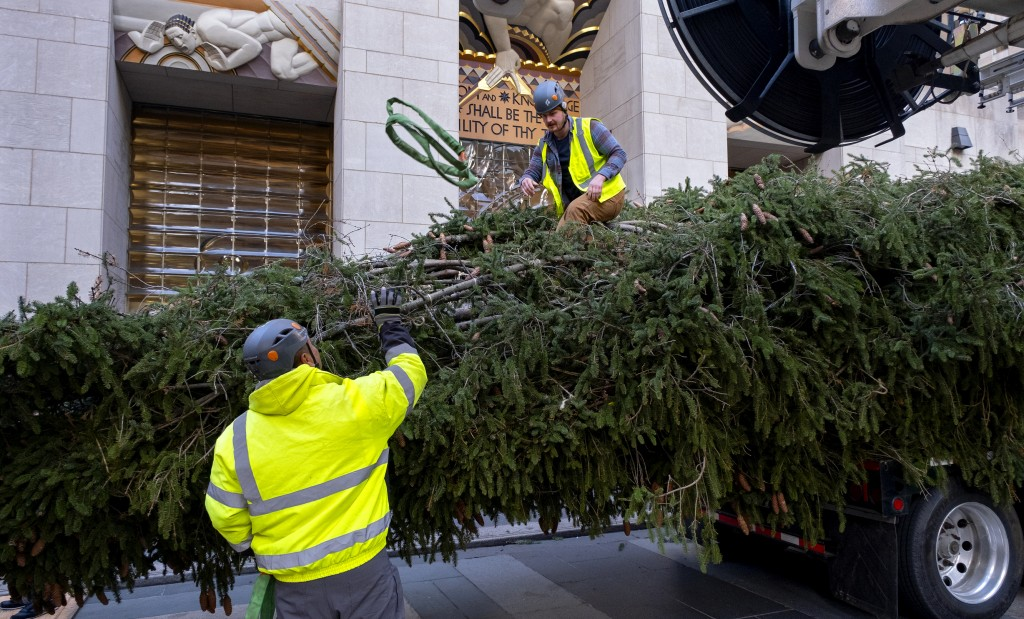 The 2019 Rockefeller Center Christmas tree, a 77-foot tall, 12-ton Norway Spruce, is prepared for setting on a platform at Rockefeller Center Saturday...