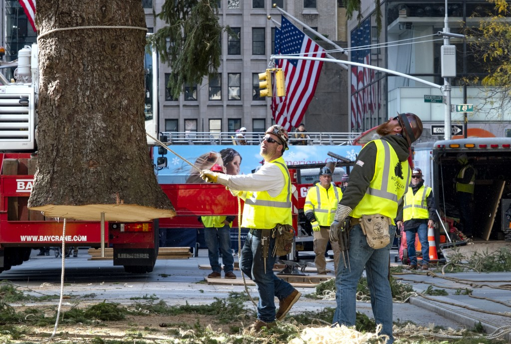 Workers steady the 2019 Rockefeller Center Christmas tree, a 77-foot tall, 12-ton Norway Spruce, just before it was set on platform at Rockefeller Cen...