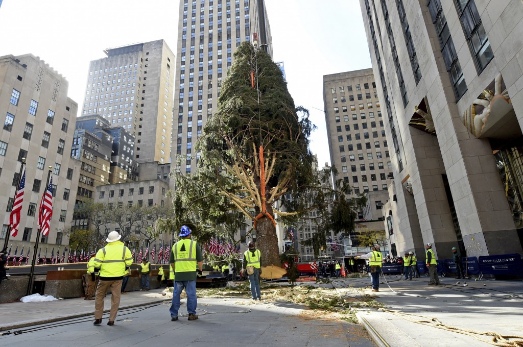 IMAGE DISTRIBUTED FOR TISHMAN SPEYER - The 2019 Rockefeller Center Christmas tree, a 77-foot tall, 12-ton Norway Spruce from Florida, N.Y., is craned ...