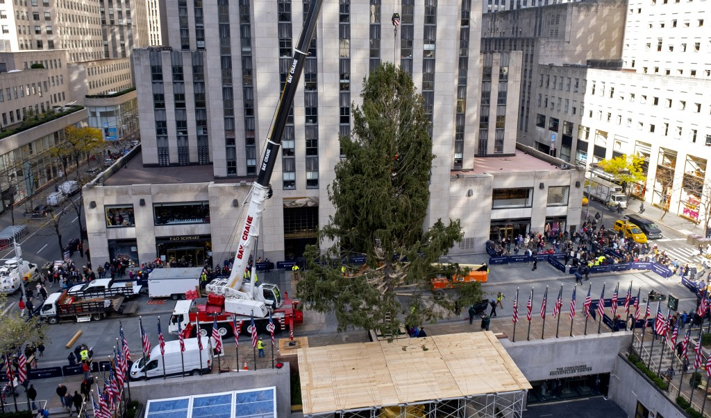 The 2019 Rockefeller Center Christmas tree, a 77-foot tall, 12-ton Norway Spruce, is secured after it was set on a platform at Rockefeller Center Satu...