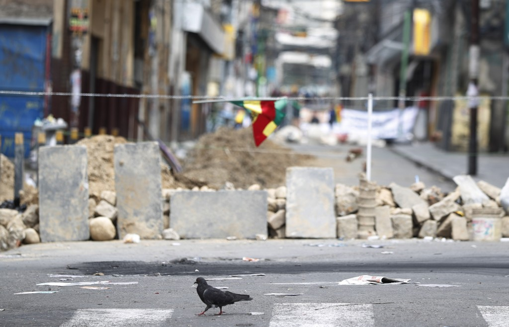 A dove walks past a barricade made by anti-government demonstrators, meters away from the presidential palace in La Paz, Bolivia, Sunday, Nov. 10, 201...