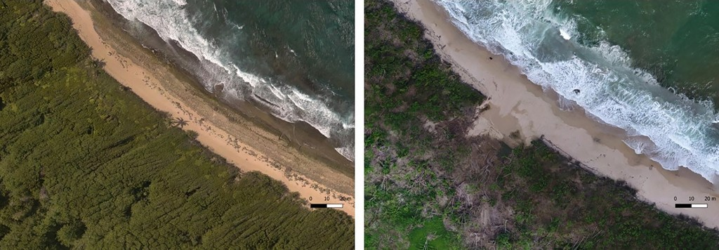 In this photo combo provided by Eric Lo, shows the shoreline in Manati, on Aug. 2017, left, before hurricane Maria and on Nov. 2017, after the Hurrica...