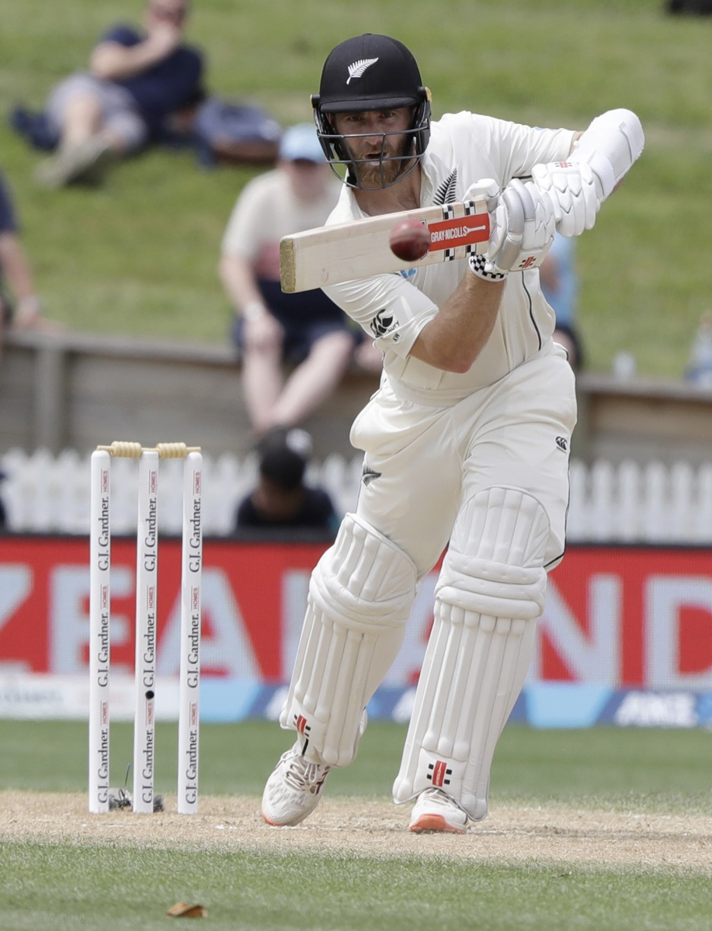 New Zealand's Kane Williamson bats during play on the final day of the second cricket test between England and New Zealand at Seddon Park in Hamilton,...