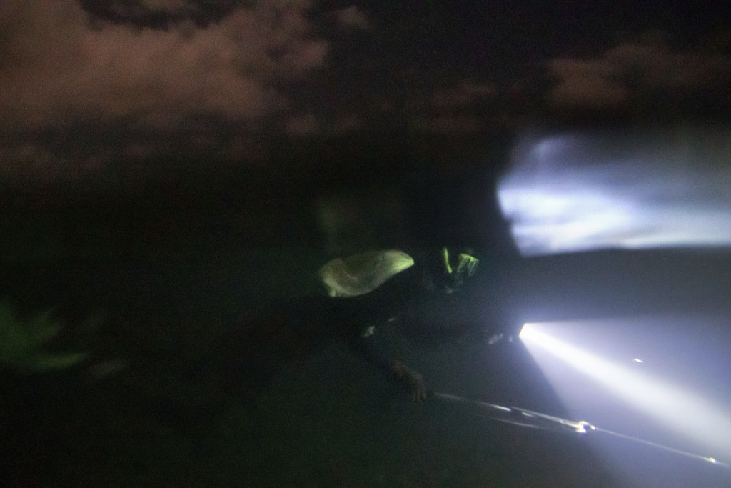 Nicholas Bingham spearfishes at night, which is banned, under a moonlit sky, in Stewart Town, Jamaica, Friday, Feb. 15, 2019. Night spearfishermen wra...