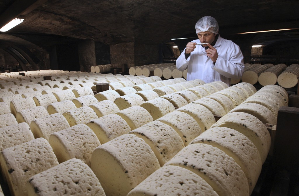 FILE - In this Jan. 21, 2009, file photo, Bernard Roques, a refiner of Societe company, smells a Roquefort cheese as they mature in a cellar in Roquef...