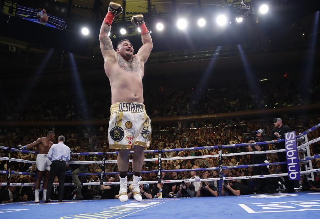 FILE - In this Saturday, June 1, 2019 file photo, Mexican American Andy Ruiz celebrates after stopping Britain's Anthony Joshua during the seventh rou...