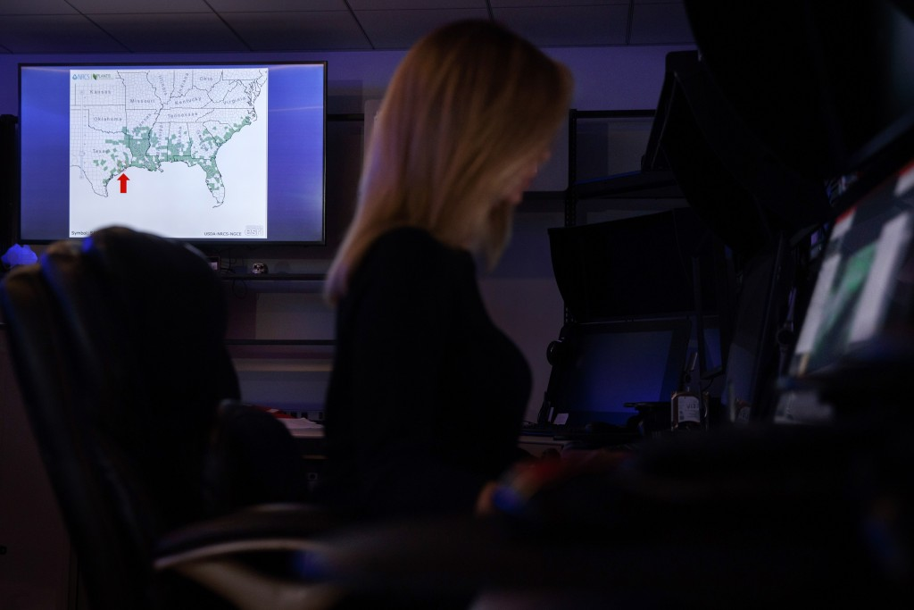 A special agent reviews a case inside the Victim Identification Lab, part of Homeland Security's Child Exploitation Investigations Unit, in Fairfax, V...