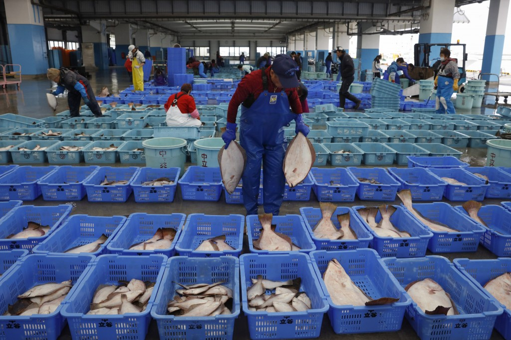 A worker sorts fish in preparation for an auction at a fish processing center Wednesday, Nov. 27, 2019, in Soma, Fukushima prefecture, Japan. The faci...