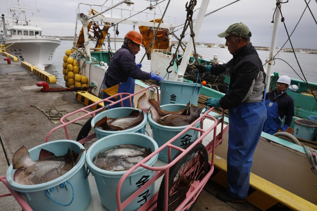 Fishermen unload fish from a boat at a processing center Wednesday, Nov. 27, 2019, in Soma, Fukushima prefecture, Japan. The facility was rebuilt afte...