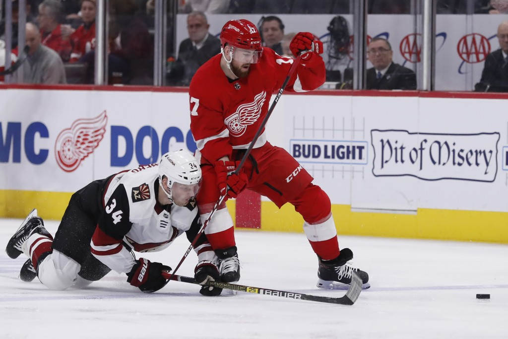 Arizona Coyotes center Carl Soderberg (34) and Detroit Red Wings defenseman Filip Hronek (17) battle for the puck during the second period of an NHL h...