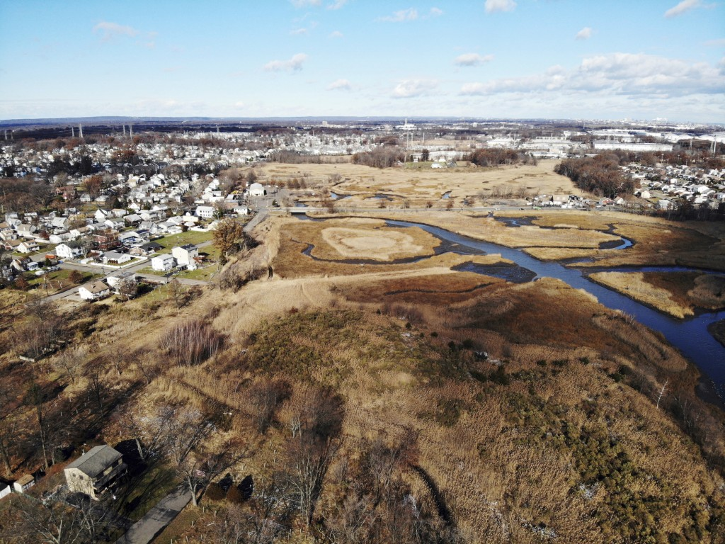 A flood-plain forest now grows where there used to be houses in the Watson Crampton neighborhood in Woodbridge, N.J., on Thursday, Dec. 5, 2019. The W...