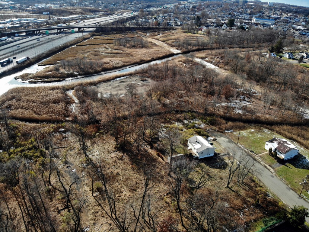 A flood-plain forest grows now where there used to be houses in the Watson Crampton neighborhood in Woodbridge, N.J., as seen from the air on Thursday...