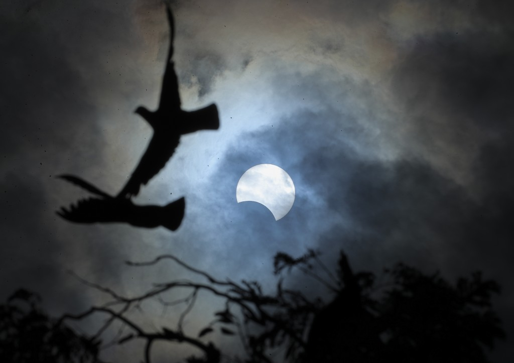 Birds fly past a partial solar eclipse in Hyderabad, India, Thursday, Dec. 26, 2019. (AP Photo/Mahesh Kumar A.)