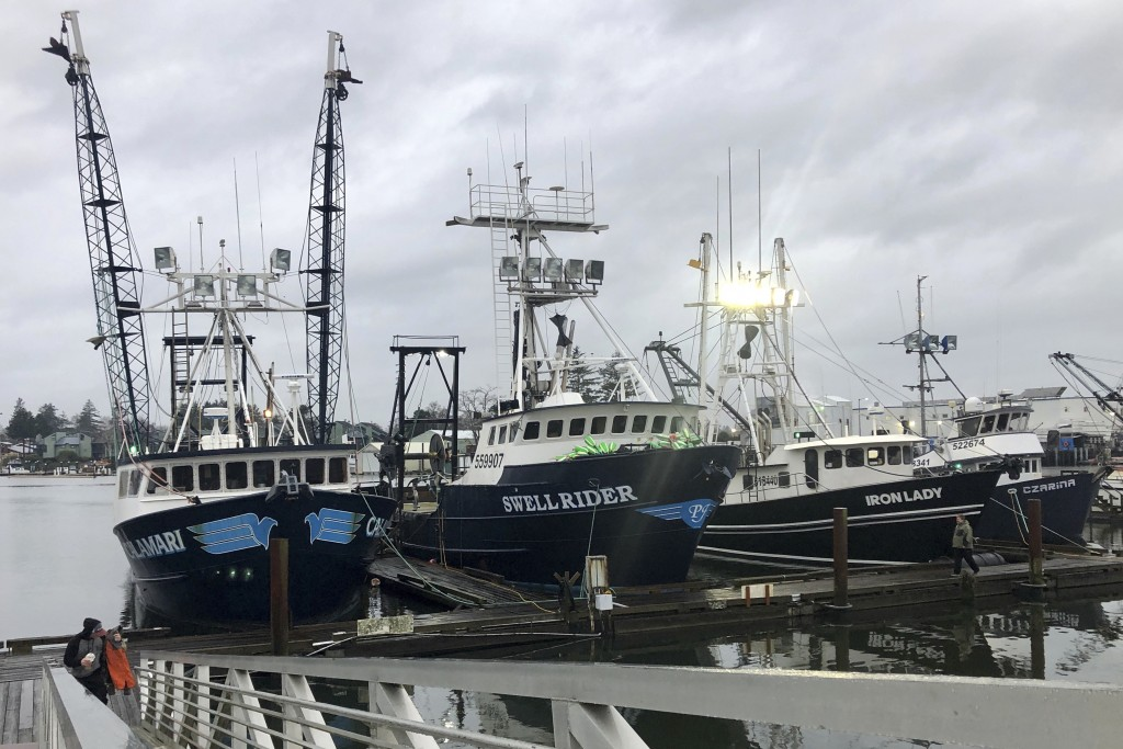 In this Dec. 11, 2019 photo, trawlers that fish for groundfish off the Oregon and Washington coast are shown in the background as a fisherman walks up...