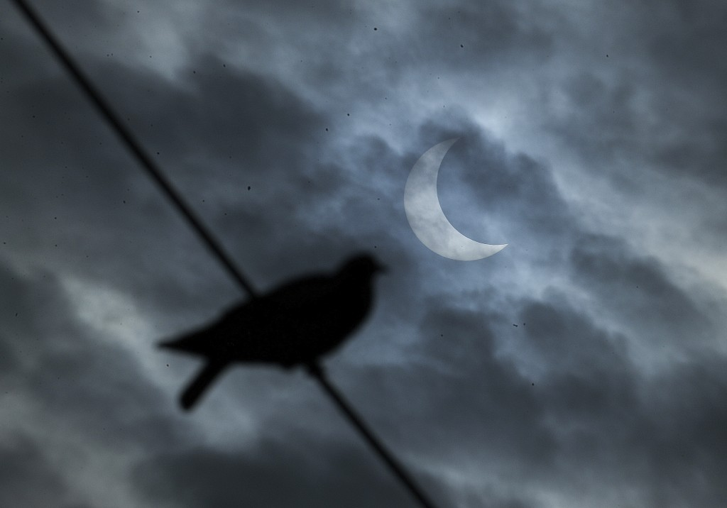 A bird sits on a wire as a partial solar eclipse is seen in the sky in Hyderabad, India, Thursday, Dec. 26, 2019. (AP Photo/Mahesh Kumar A.)
