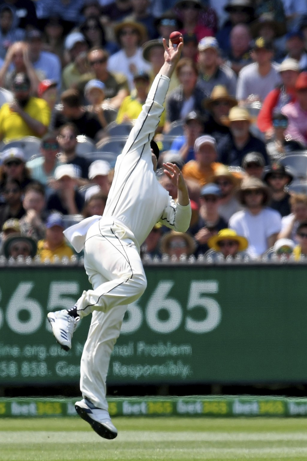 New Zealand's Henry Nicholls catches out Australia's Steven Smith during play in their cricket test match in Melbourne, Australia, Friday, Dec. 27, 20...