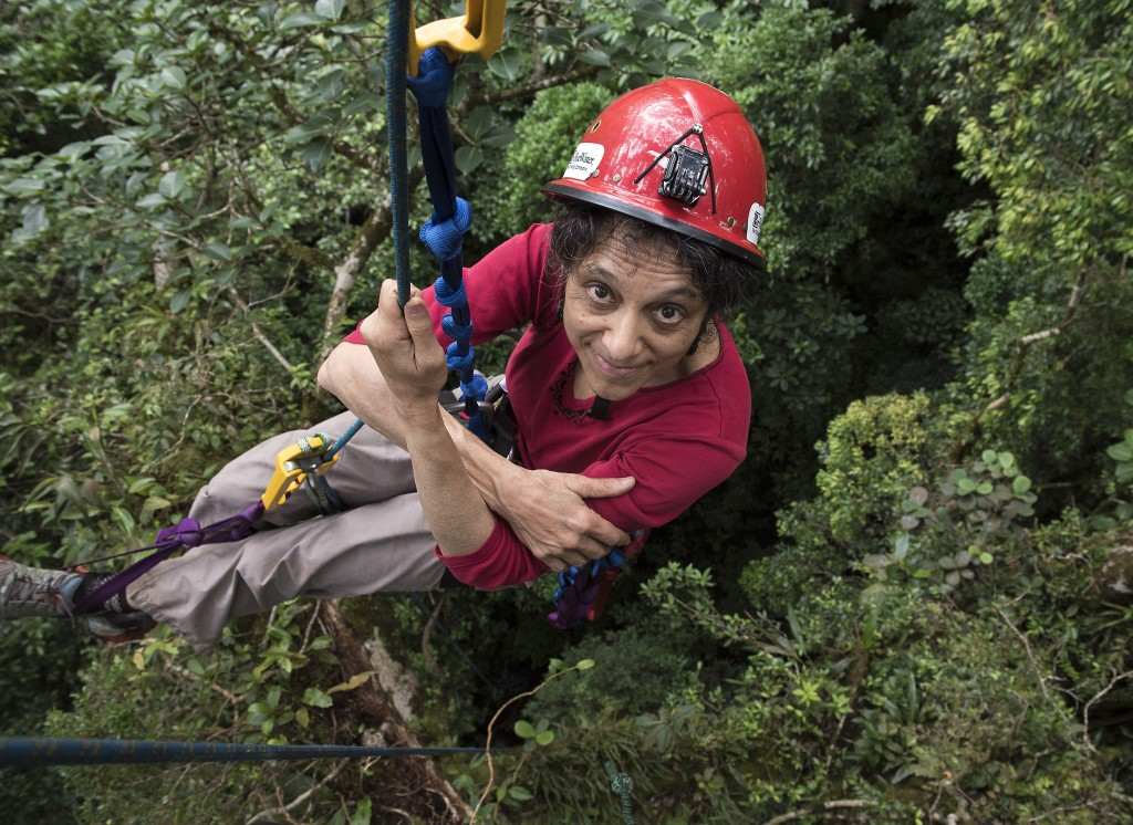 In this 2014 photo provided by Sybil Gotsch shows ecologist Nalini Nadkarni studying the rainforest canopy in the Monteverde region of Costa Rica. Nad...