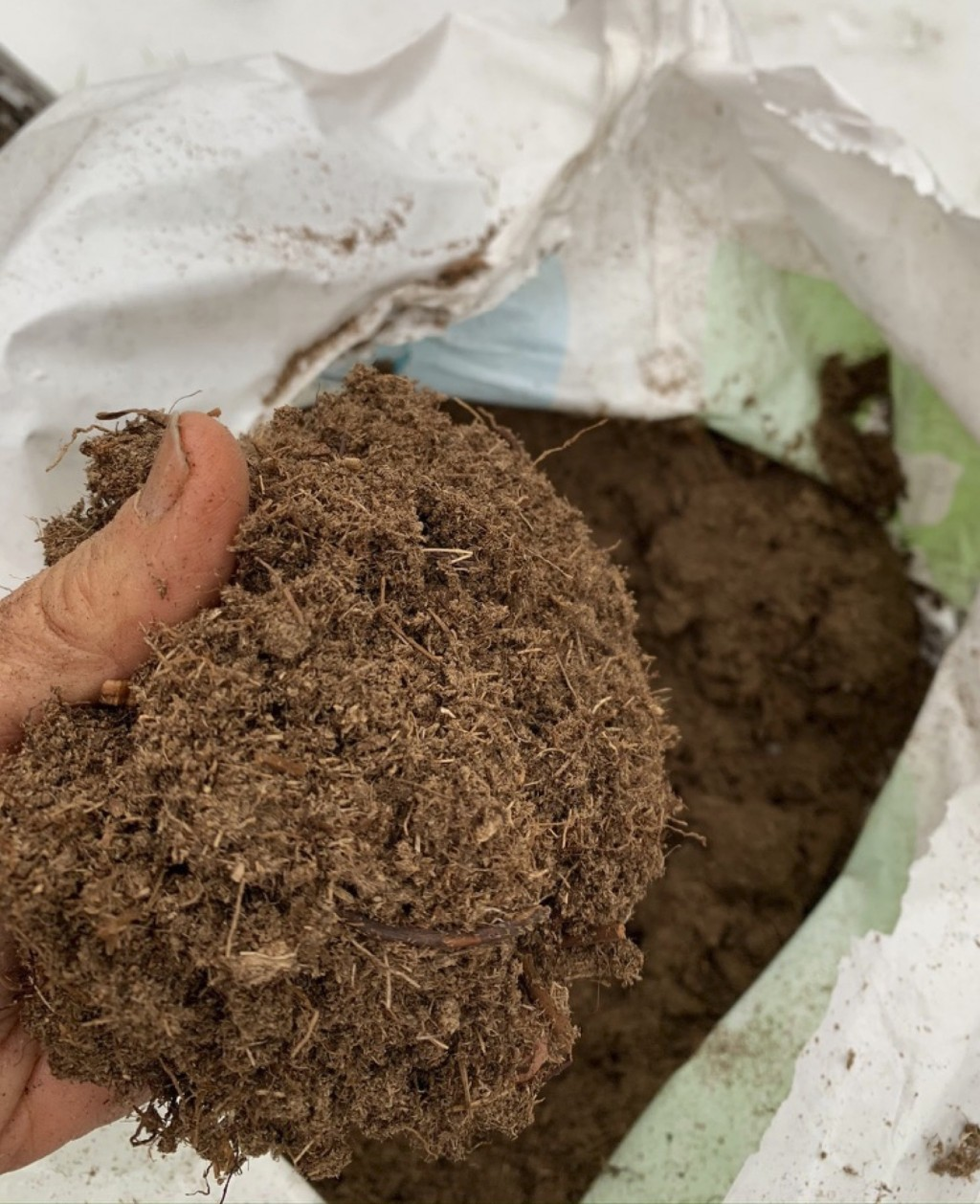 This undated photo shows a handful of peat moss in New Paltz, N.Y. Although peat moss is a useful soil amendment, such as in potting mixes, it is not ...