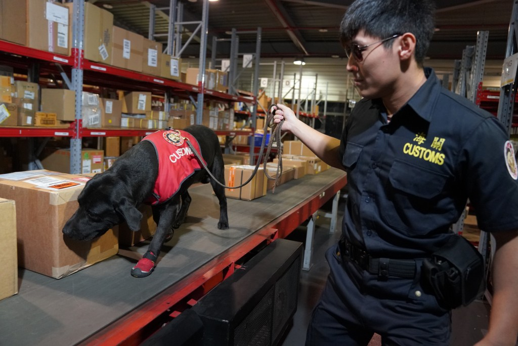 A detection dog (CNA photo from Customs Administration)