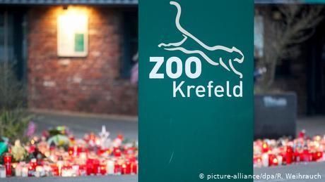 Germany: CDU politician criticizes sky lantern marketing after Krefeld Zoo fire