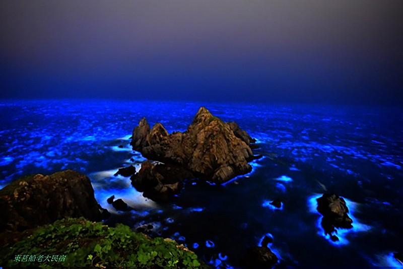 馬祖近岸現微量赤潮,當地漁民推測藍眼淚將爆量