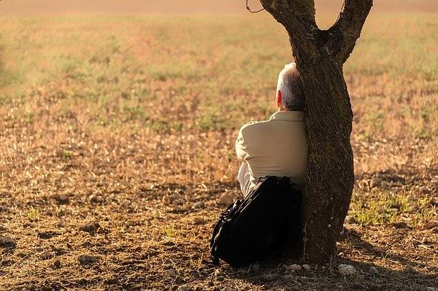 """圖片來源:<a href=""""https://pixabay.com/?utm_source=link-attribution&utm_medium=referral&utm_campaign=image&utm_content=1156543"""">Pixabay</a> / 由<a href=""""https://pixabay.com/users/josealbafotos-1624766/?utm_source=link-attribution&utm_medium=referral&utm_campaign=image&utm_content=1156543"""">Jose Antonio Alba</a> 提供"""