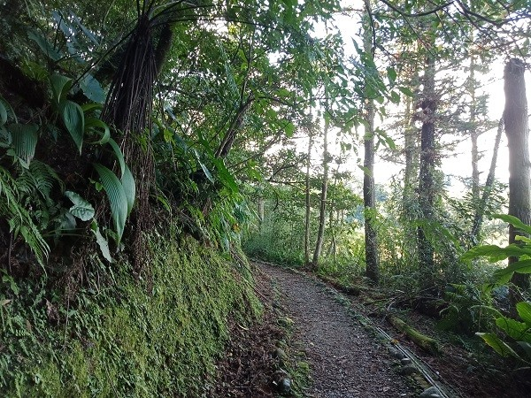 Explore Pingxi's mining heritage on New Taipei's Dongshige hike