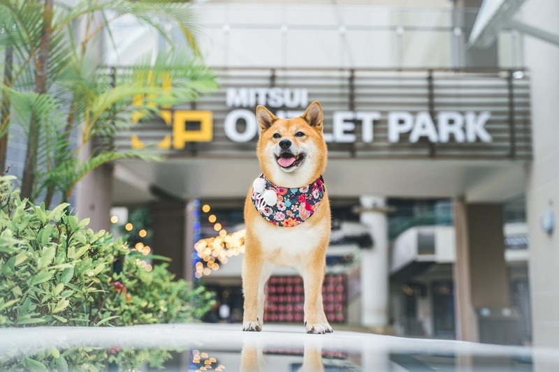 (Facebook/Mitsui Outlet Park Taichung Port photo)