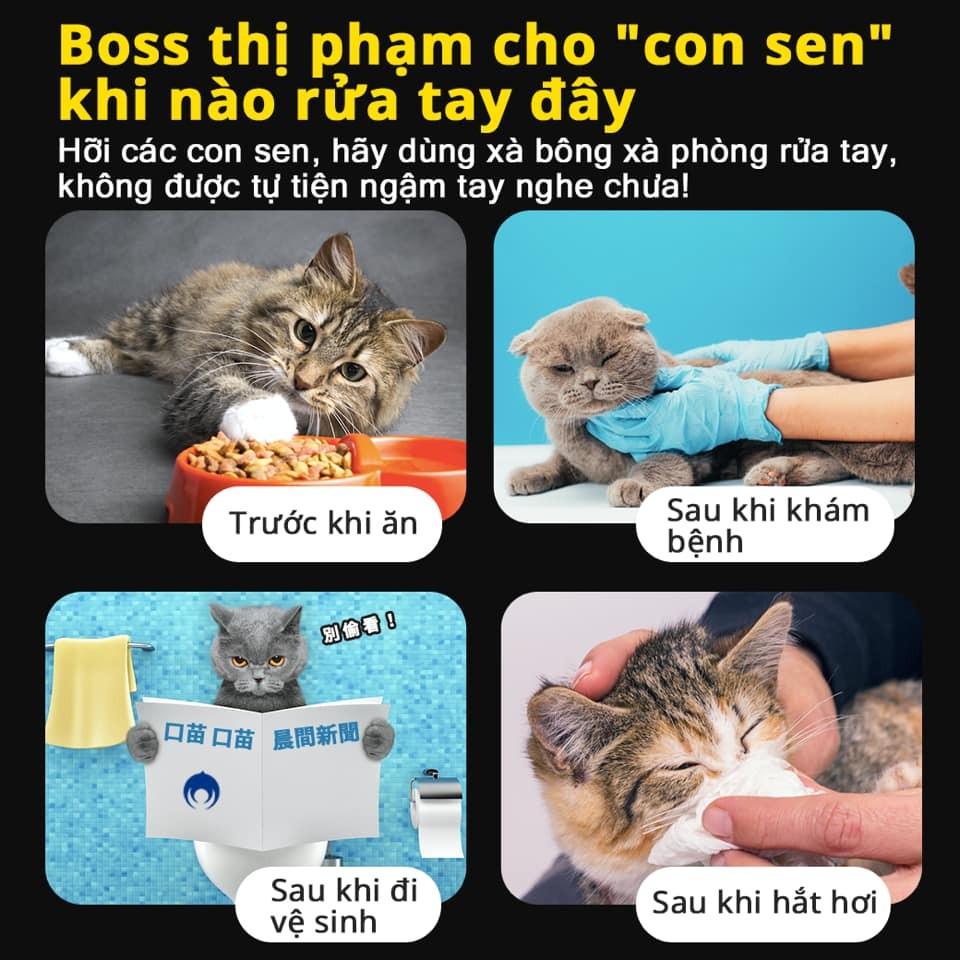 (說明:越南文圖卡。(翻攝自內政部臉書專頁))