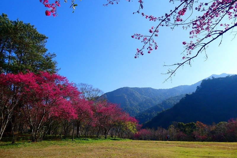 Aowanda National Forest Recreation Area. (Nantou Forest District Office photo)